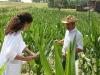 Controlli sulle colture
